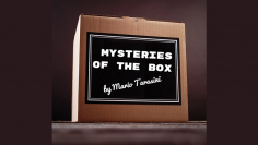Mysteries of the Box by...